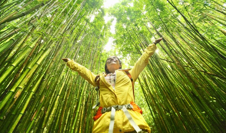 3 Fabulous Expeditions Eco-Friendly Travelers Should Add to Their Travel List